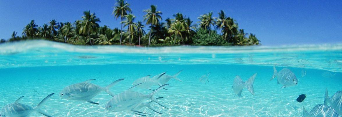 Горящие туры на Мальдивы из Запорожья