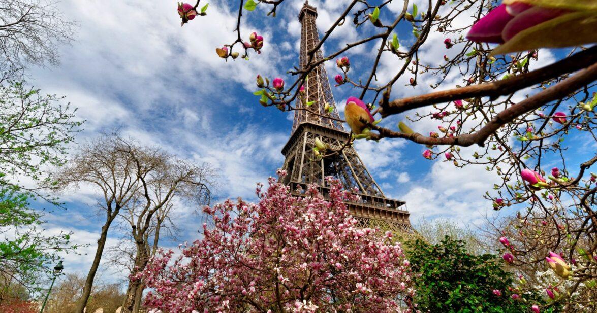 Привет, Париж!