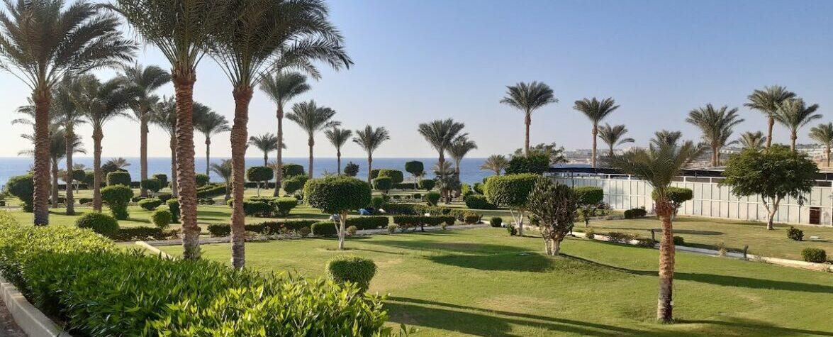 Grand Oasis Resort 4*