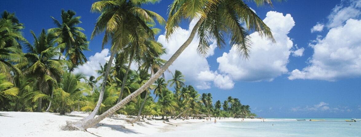 Горящие туры в Доминикану (бюджетный отели)